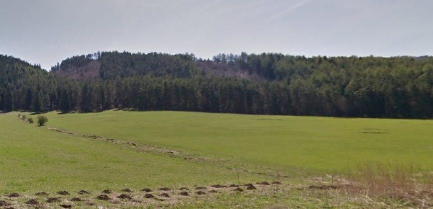 ALLE, s.r.o.: Pozemok na predaj 714 m2 v obci Necpaly